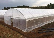 Spherical Greenhouse from Chinese Providers
