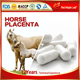 OEM Supplement Antioxidant Anti-aging Horse Placenta Capsules