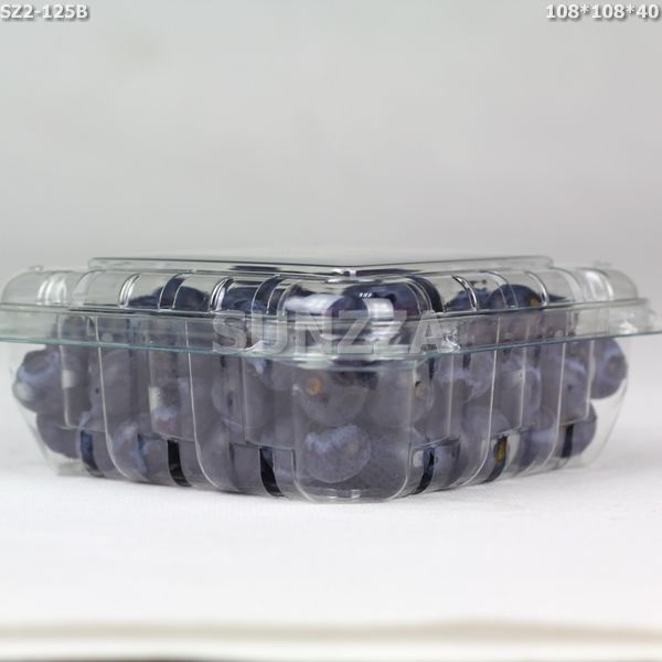 blueberry packing container