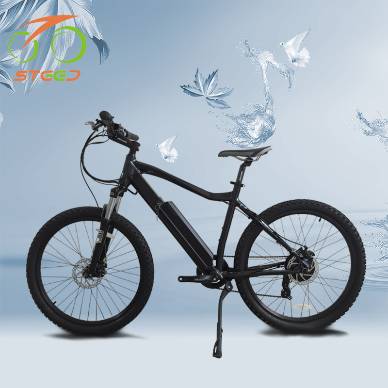 useful new model electric bicycle guangzhou in china