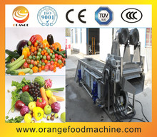 Industrial Stainless Steel Carrot Washing Machine