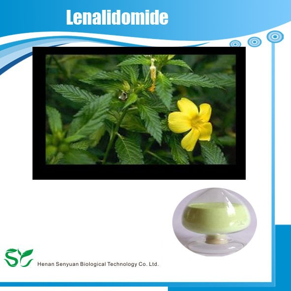 Manufacturers Supply Organic and Pure Damiana with Best Price