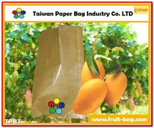 TPBI fruit and vegetables packaging materials growing paper bag protection paper bag