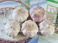2014 Garlic for sales vegetable price list garlic exporter and supplier