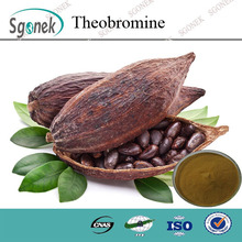 Factory Supply Cocoa Seed Extract Theobromine 10%-20% plant extract