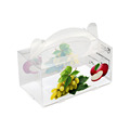 Competitive Price Plastic Fruit Box, Apple Fruit Packaging PP PVC PET Box From China Supplier