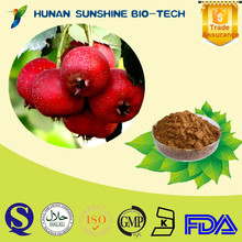 100% Natural Herb Extraction Hawthorn Berry Extract 10%-90% Flvones
