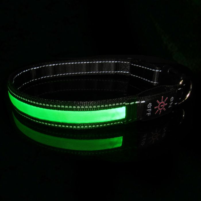 2017 New Style Led Flashing Dog Collars with USB Rechargeable Function
