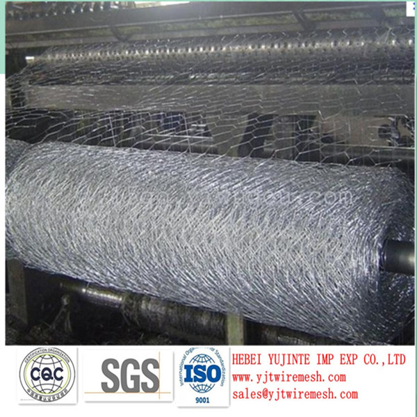 fish farm stainless steel hexagonal wire mesh/chicken wire mesh