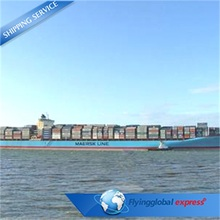 sea freight from china qingdao to usa / nhava sheva / hamburg
