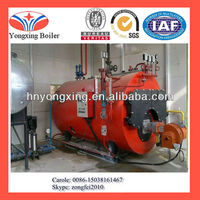 2t/h LPG fired steam boiler for chicken