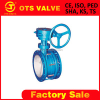 BV-SY-106 100mm Telescopic double flange butterfly valve with gear operated