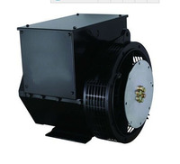 China Hot Sale 230V Low Speed Electric Brand Alternator