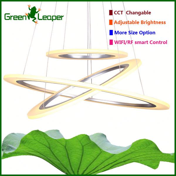 Highly attractive lamp circle Hanging Light Fixture for cake shops