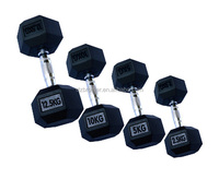Strength training type rubber hex dumbbells rubber coated body building(DSY-D11)