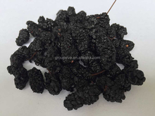 Dried Berries Dried Organic Black Mulberries