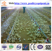 2016 factory direct sale Ce chicken farm equipement automatic broiler pan feeding system