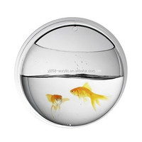 On Stocked Sale Plastic Wall Mounted Fish Tank, Small/Medium/Big Size Available