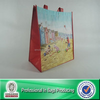 High Quality Custom Cheap Recyclable PP Non Woven Women Fashion Shopping Bag