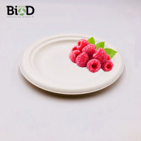 Biodegradable Compostable Disposable Compostable Sugarcane 6 7 9 10 11 inch Plate Tableware