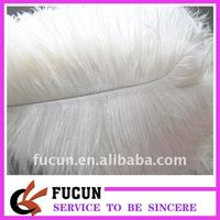 White Ostrich Feather/wholesale ostrich feathers