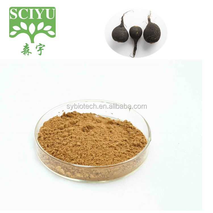 100% Natural Black Radish Extract Powder 10:1