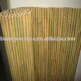 bamboo rolled fence