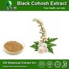 Halal&Kosher Actaea Racemosa Extract/Natural Black Cohosh P.E/Powdered Black Cohosh Extract
