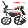 PT-E001 2014 New Folding Portable High Quality EEC Chinese Sport Motorcycles