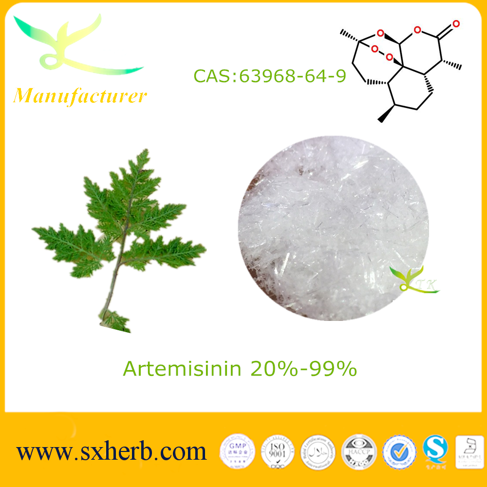 Natural Artemisinin Plant Extract for Cancer