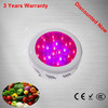 Advanced Plant Tissue Culture Led Grow Light,75W UFO Growing Lights,200w HPS bulb replacement led grow light