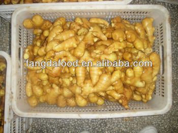 China organic fresh ginger suppliers