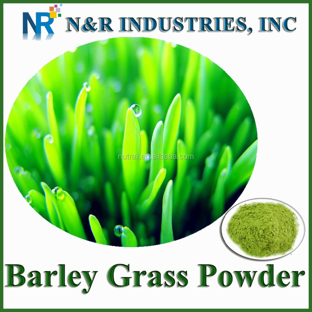 Organic Barley Grass Jucie Powder for Barley tea or other drinking
