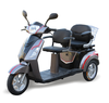 popular 2 seats 3 wheel mobility tricycle/electric scooter/electric bike/electric motorcycle for disabled/older/handicapped