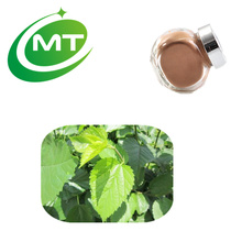 Health Product 1% 1-deoxynojirimycin Mulberry Extract Powder