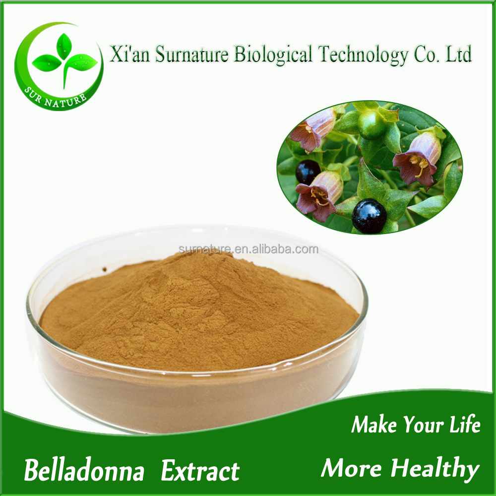 100% natural organic belladonna extract for belladonna plaster/Hyoscyamine powder