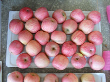 Fresh Delicous Fuji Apple Price with Wholesales Price