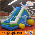 Animated inflatable dolphin sea world slides,water slide with pool