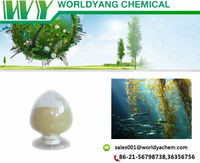 Brown Algae Extract/ Fucoidan 90%, 85% 9072-19-9