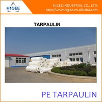 waterproofing pe tarpaulin , covering plastic canvas poly tarp , kinds usage of protective lona
