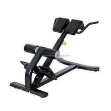 strength machine Back Extension GHD XP31