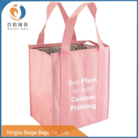 laminated pp non woven pp woven flat folding refrigerated cheap cooler bag