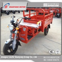 High quality cheap custom 110CC three wheel motorcycle , 1P52FMH gasoline(petrol) tricycle china