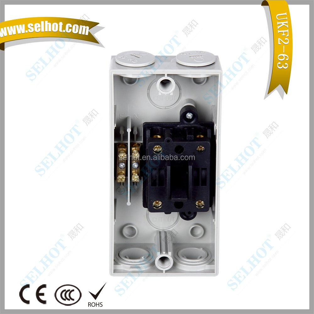 63A Weather Protected 2 Pole IP66 Isolation Switch For Industrial