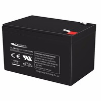 12V14Ah Long Life Lead Acid Battery