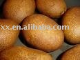 Fresh Russet Burbank Potato