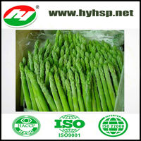 Green White Fresh Frozen Asparagus