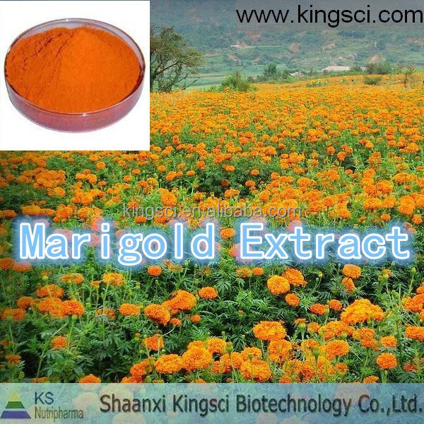 marigold extracts, 2%marigold extracts, marigold extract for chickens