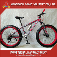 Wholesale rocky mountain Fat tire bike