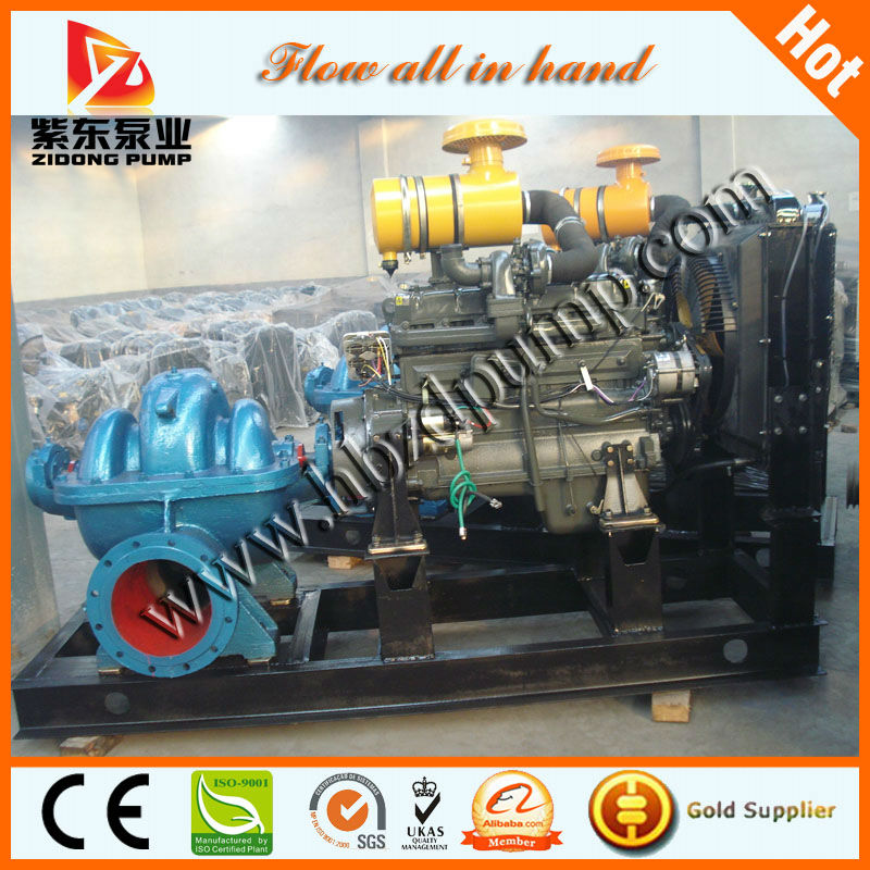 horizontal booster pump